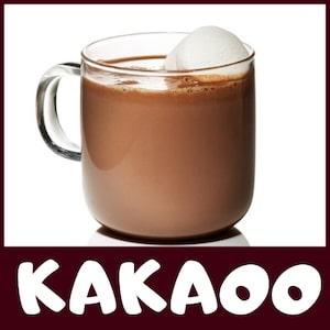 kakaoo big logo